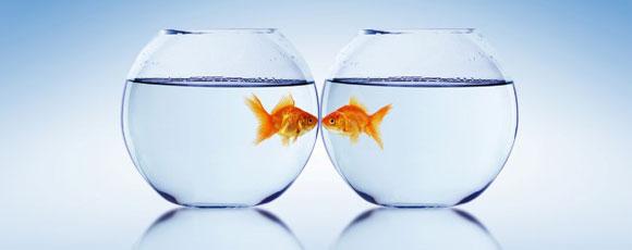 Un cadre pour renouer le dialogue, mieux comprendre vos difficultés et trouver votre propre chemin.